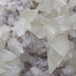 Dogtooth Calcite Crystals on Dolomite -Western NY - For Sale