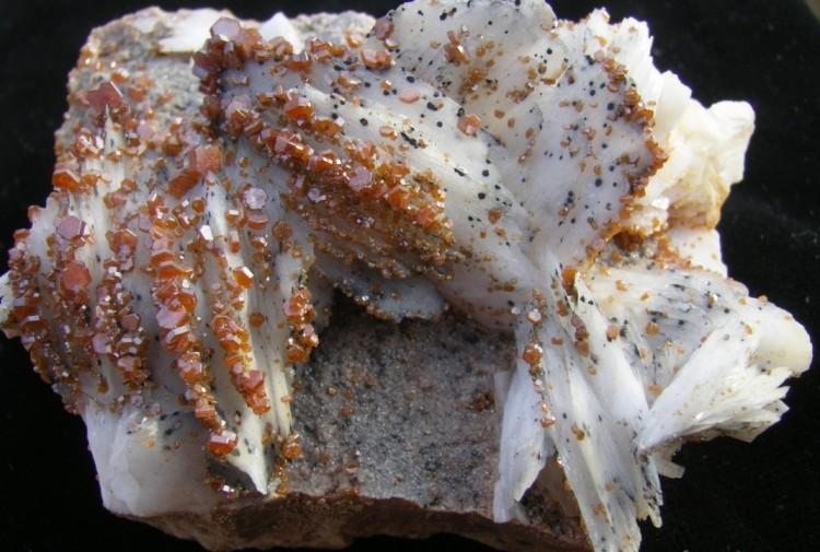 Vanadinite on Bladed White Barite - Morocco