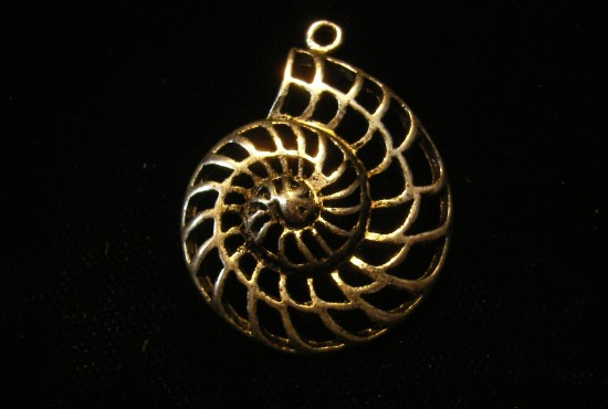 Sterling Silver Ammonite for Necklace - For Sale - Fossils-Crystals.com