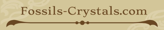 Fossils-Crystals.com